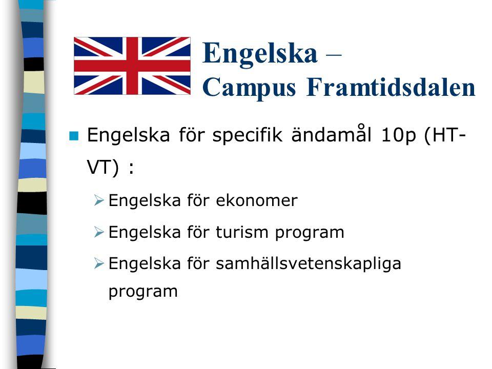Engelska – Campus Framtidsdalen Teknisk engelska  Internationella Magister program 3p (HT)  Engelska för IT/Data program 5p (VT)  Produktion tekniker – distans kurs 5p (VT)  Metallurgy Engineers (VT06)