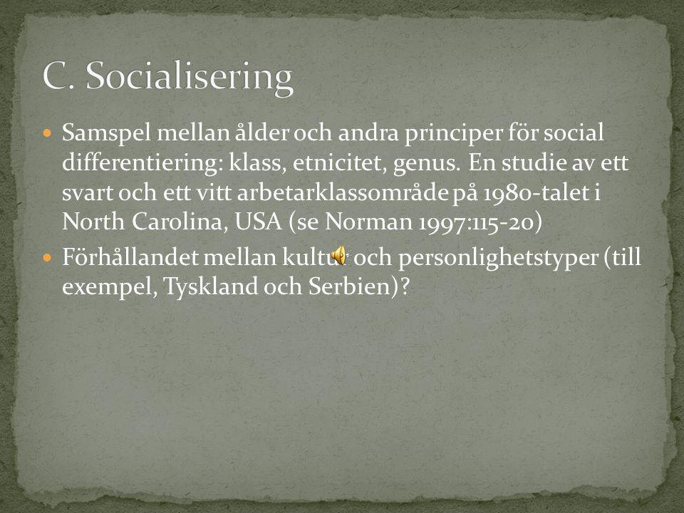 Samspel mellan ålder och andra principer för social differentiering: klass, etnicitet, genus.
