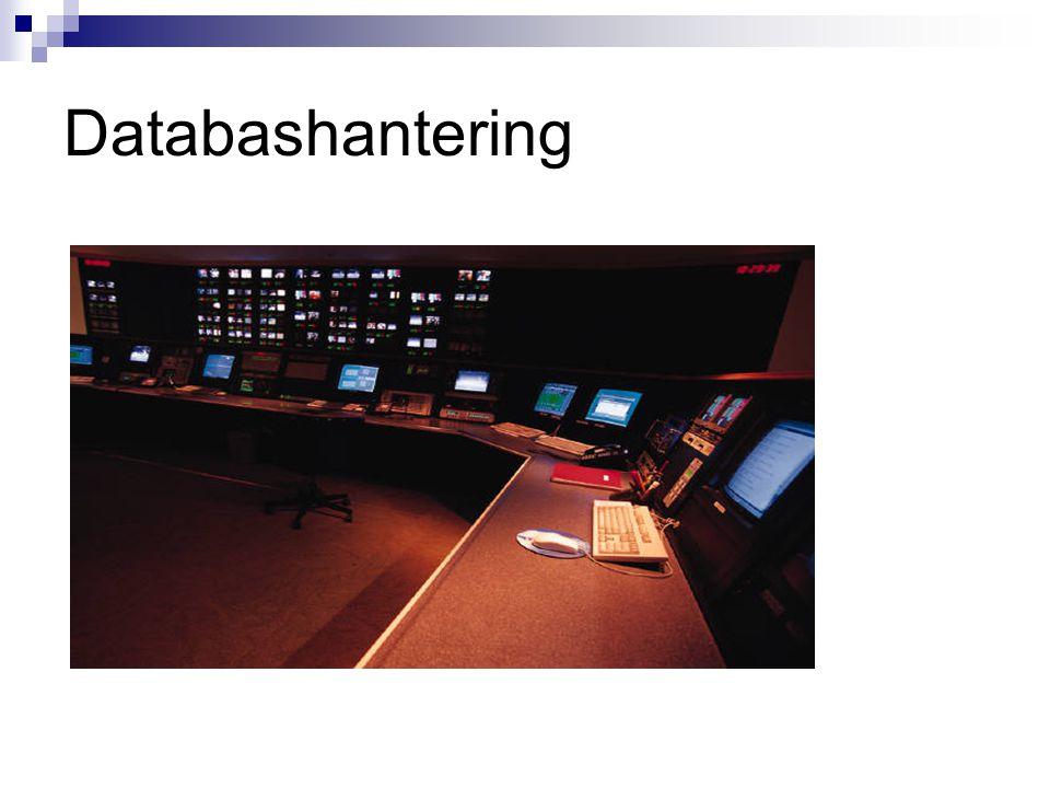 Databashantering