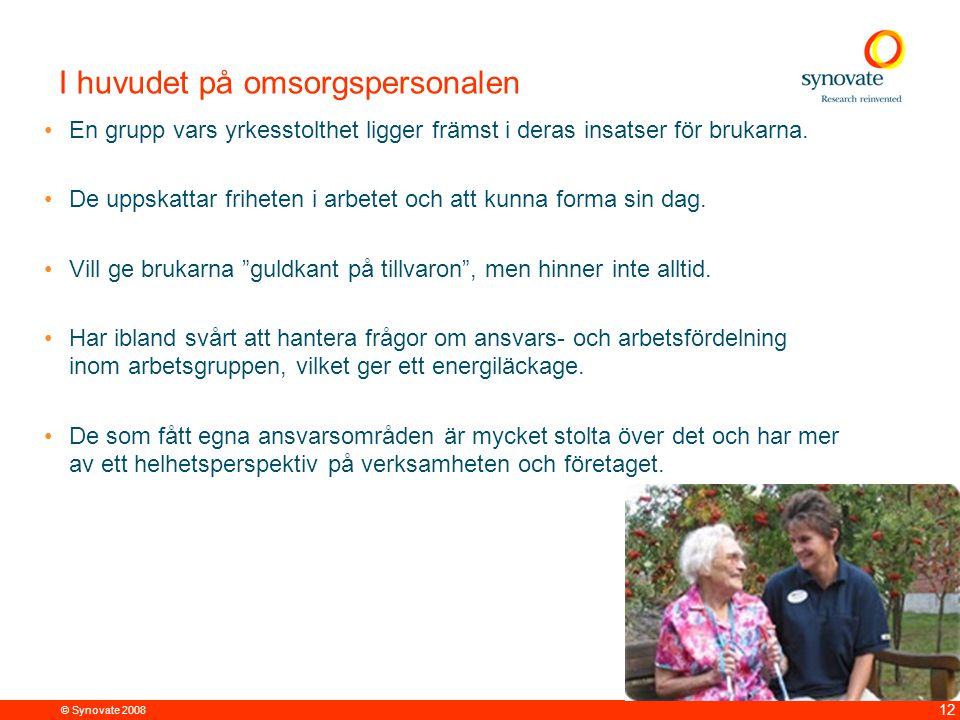 © Synovate 2008 12 I huvudet på omsorgspersonalen En grupp vars yrkesstolthet ligger främst i deras insatser för brukarna. De uppskattar friheten i ar