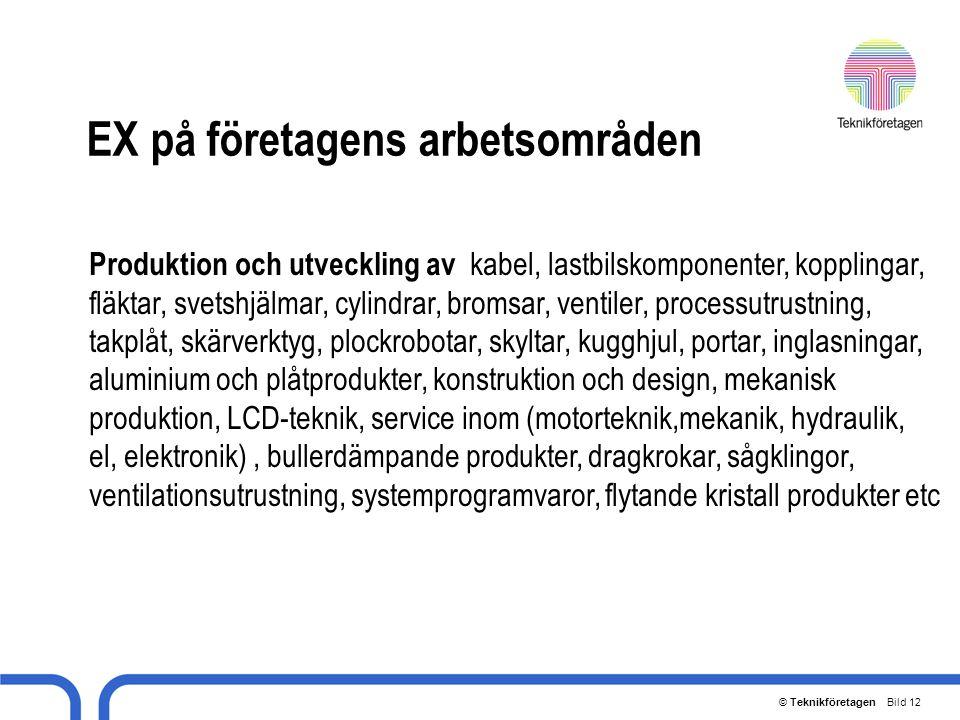 © Teknikföretagen Bild 12 EX på företagens arbetsområden Produktion och utveckling av kabel, lastbilskomponenter, kopplingar, fläktar, svetshjälmar, c