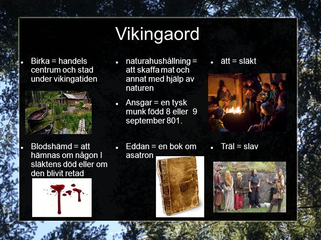 Vikingaord Birka = handels centrum och stad under vikingatiden naturahushållning = att skaffa mat och annat med hjälp av naturen Ansgar = en tysk munk
