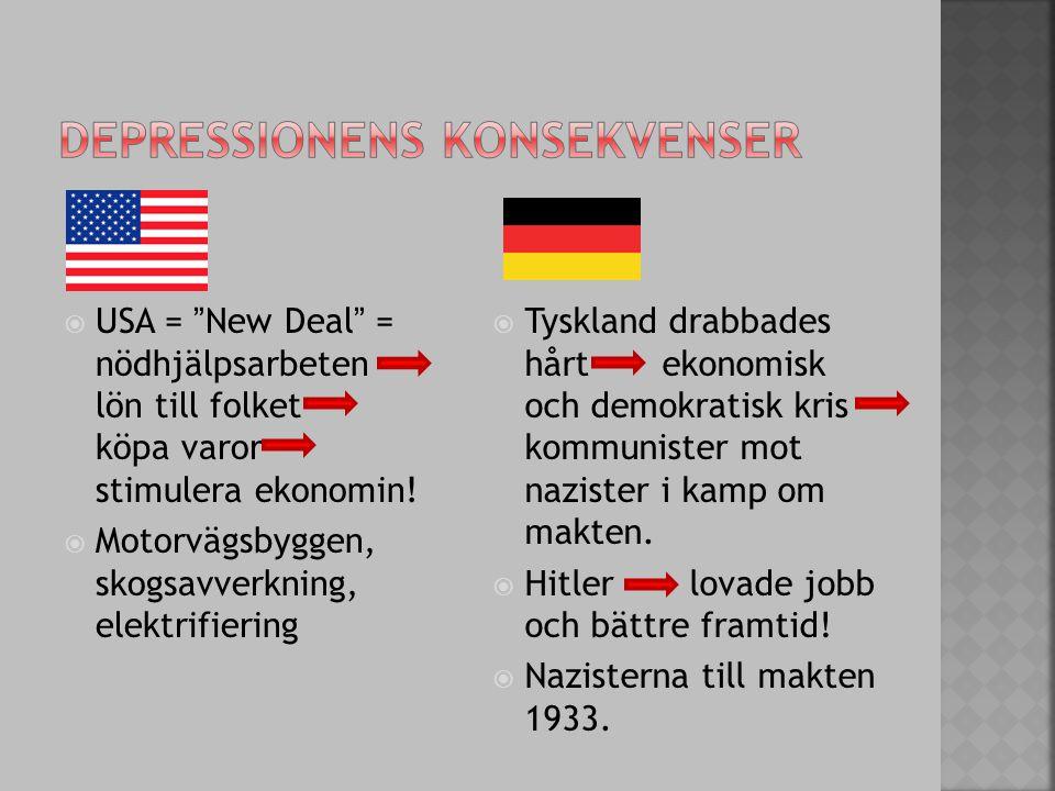 """ USA = """"New Deal"""" = nödhjälpsarbeten lön till folket köpa varor stimulera ekonomin!  Motorvägsbyggen, skogsavverkning, elektrifiering  Tyskland dra"""