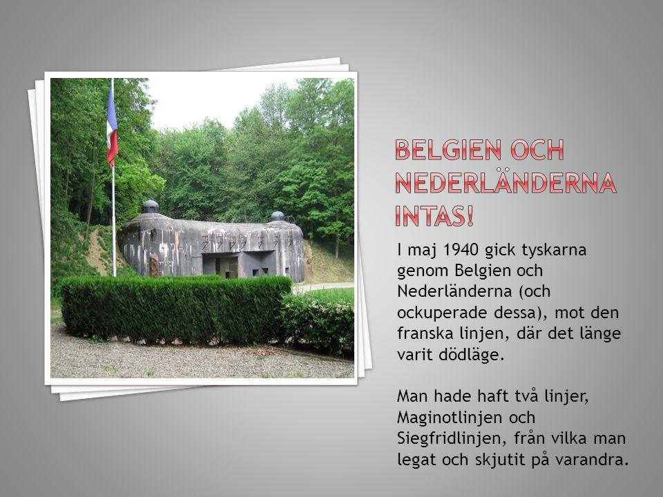 I maj 1940 gick tyskarna genom Belgien och Nederländerna (och ockuperade dessa), mot den franska linjen, där det länge varit dödläge. Man hade haft tv