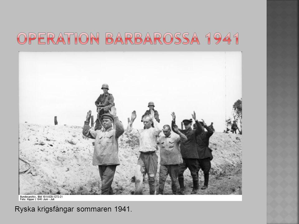 Ryska krigsfångar sommaren 1941.