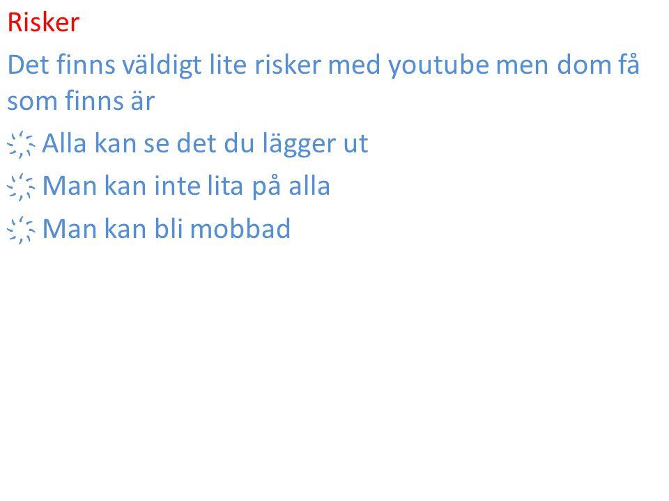 Risker Det finns väldigt lite risker med youtube men dom få som finns är ҉ Alla kan se det du lägger ut ҉ Man kan inte lita på alla ҉ Man kan bli mobb
