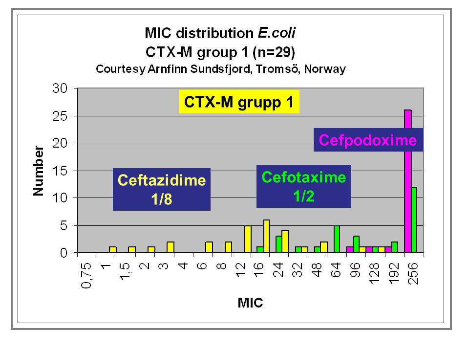 Cefotaxime 1/2 Ceftazidime 1/8 Cefpodoxime CTX-M grupp 9