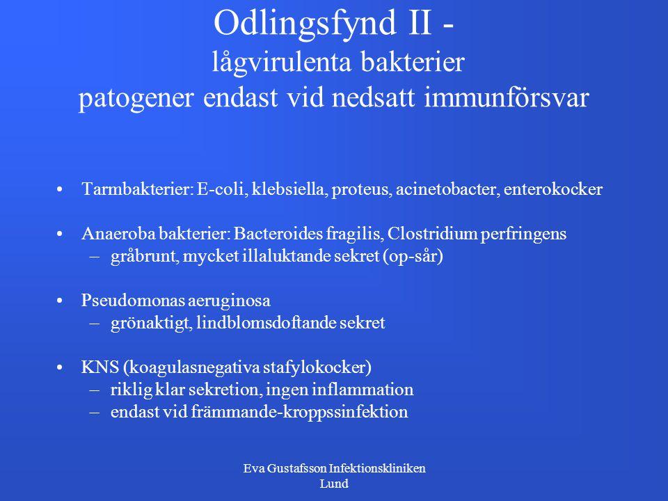 Eva Gustafsson Infektionskliniken Lund Odlingsfynd II - lågvirulenta bakterier patogener endast vid nedsatt immunförsvar Tarmbakterier: E-coli, klebsi