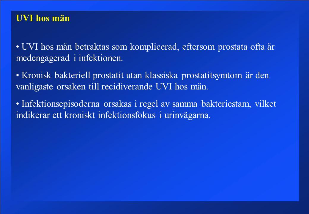UVI hos män UVI hos män betraktas som komplicerad, eftersom prostata ofta är medengagerad i infektionen.