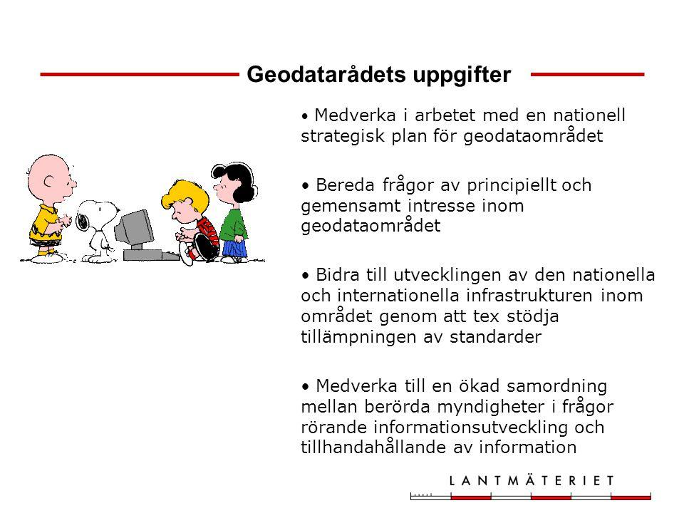 Geodatarådets uppgifter Medverka i arbetet med en nationell strategisk plan för geodataområdet Bereda frågor av principiellt och gemensamt intresse in