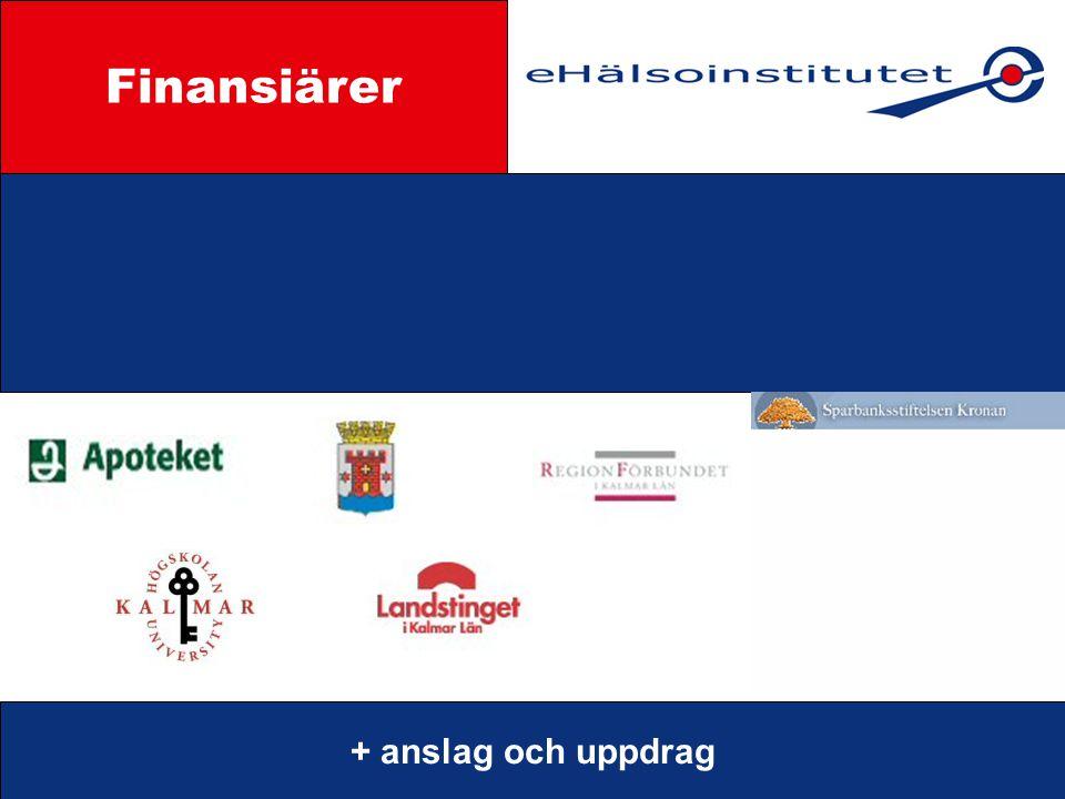 Styrgrupp Finansiärer + anslag och uppdrag