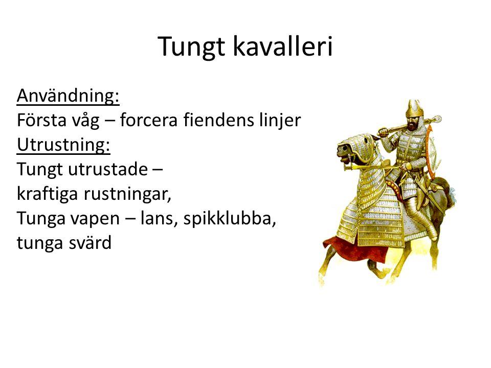Tungt kavalleri Användning: Första våg – forcera fiendens linjer Utrustning: Tungt utrustade – kraftiga rustningar, Tunga vapen – lans, spikklubba, tunga svärd