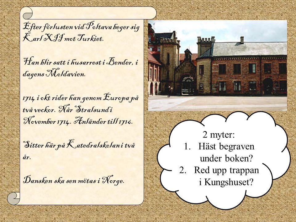 Efter förlusten vid Poltava beger sig Karl XII mot Turkiet. Han blir satt i husarrest i Bender, i dagens Moldavien. 1714 i okt rider han genom Europa