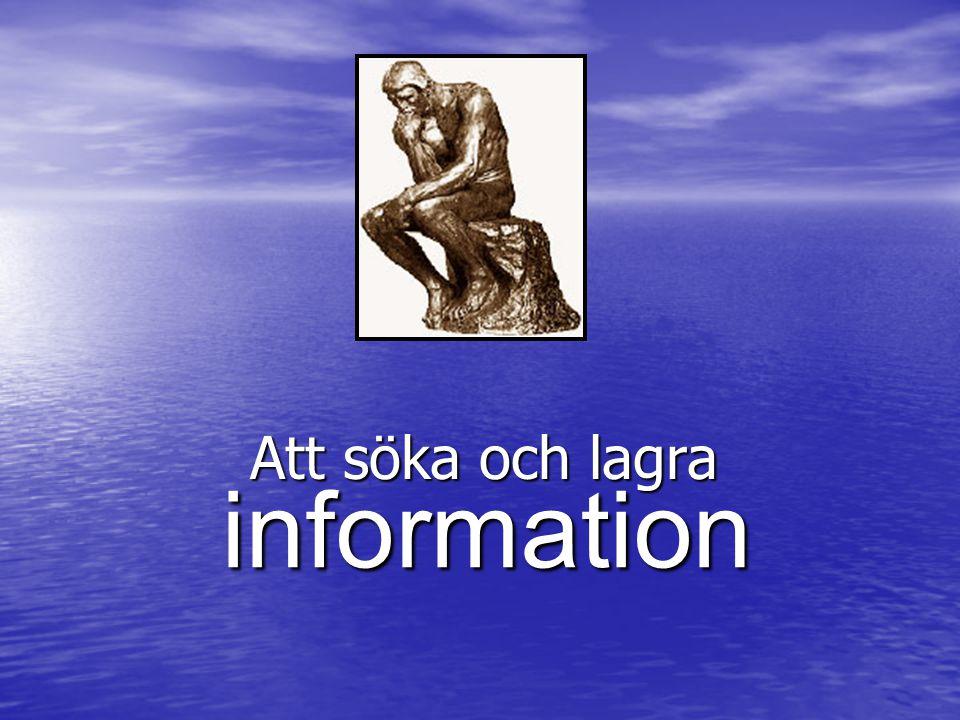Att söka och lagra information