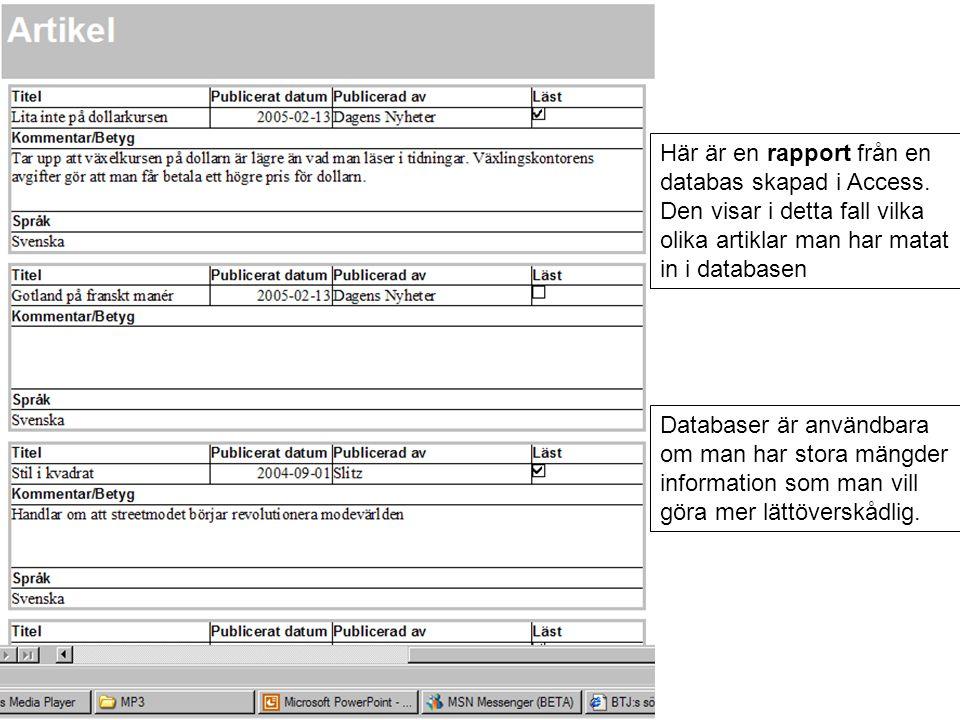 Här är en rapport från en databas skapad i Access.