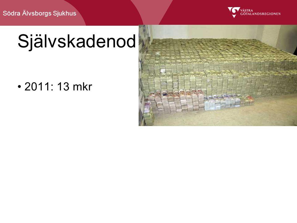 Södra Älvsborgs Sjukhus Självskadenod 2011: 13 mkr