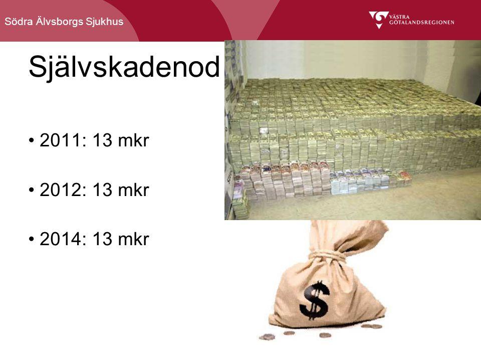 Södra Älvsborgs Sjukhus Självskadenod 2011: 13 mkr 2012: 13 mkr 2014: 13 mkr