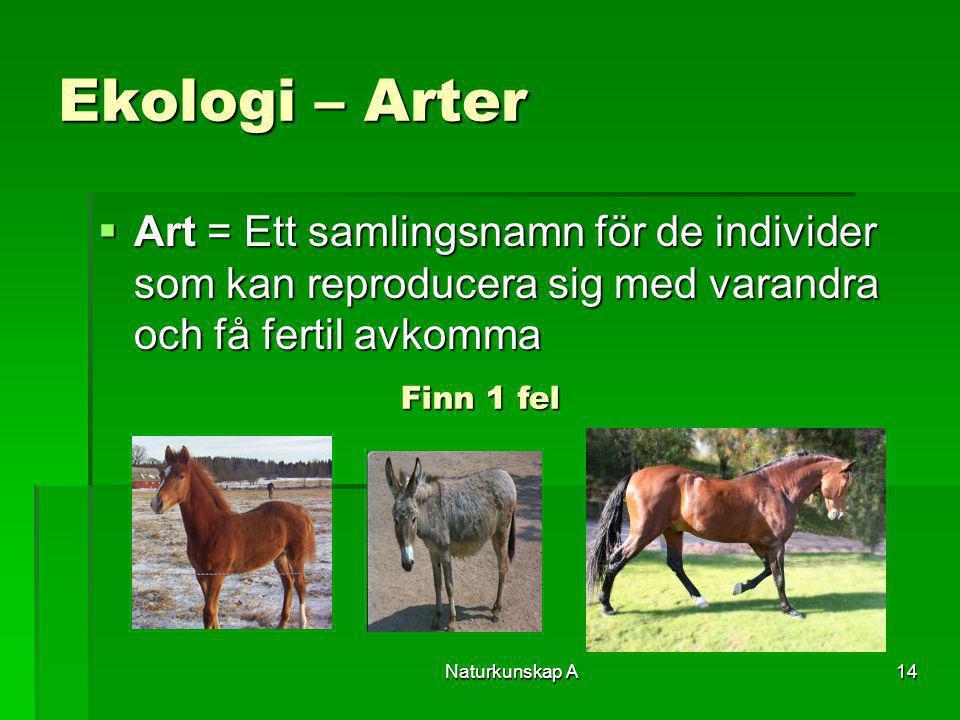 Naturkunskap A14 Ekologi – Arter  Art = Ett samlingsnamn för de individer som kan reproducera sig med varandra och få fertil avkomma Finn 1 fel