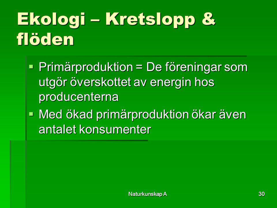 Naturkunskap A30 Ekologi – Kretslopp & flöden  Primärproduktion = De föreningar som utgör överskottet av energin hos producenterna  Med ökad primärp