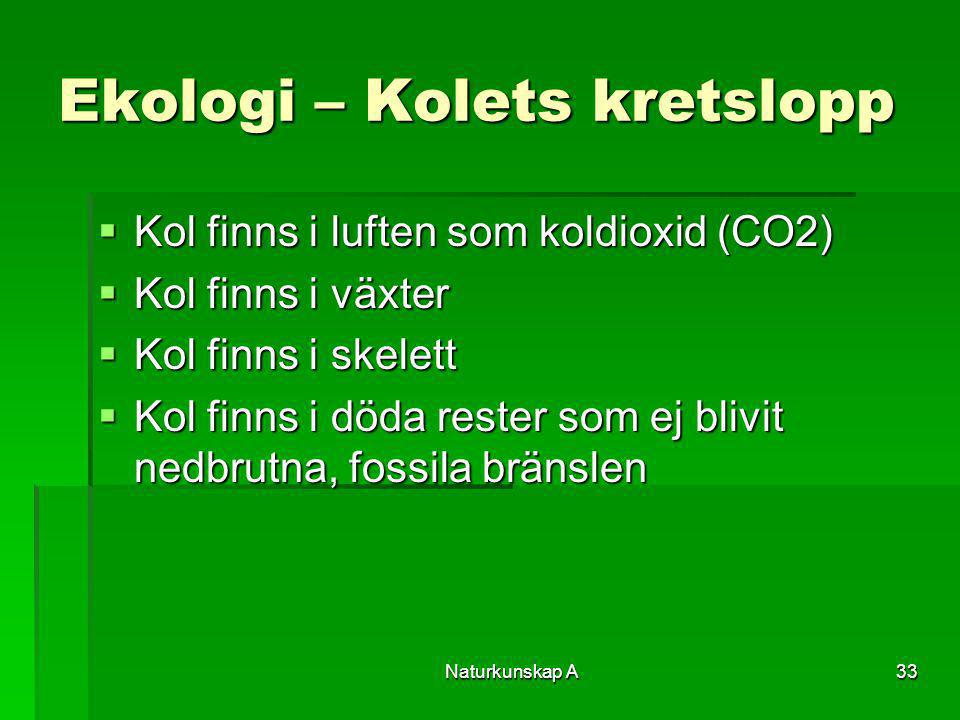 Naturkunskap A33 Ekologi – Kolets kretslopp  Kol finns i luften som koldioxid (CO2)  Kol finns i växter  Kol finns i skelett  Kol finns i döda res