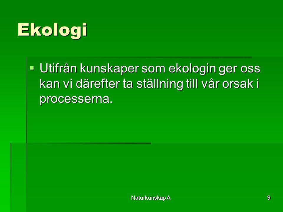 Naturkunskap A9 Ekologi  Utifrån kunskaper som ekologin ger oss kan vi därefter ta ställning till vår orsak i processerna.