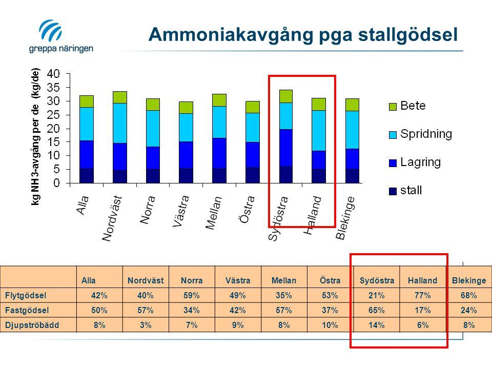 Ammoniakavgång pga stallgödsel AllaNordvästNorraVästraMellanÖstraSydöstraHallandBlekinge Flytgödsel42%40%59%49%35%53%21%77%68% Fastgödsel50%57%34%42%57%37%65%17%24% Djupströbädd8%3%7%9%8%10%14%6%8%