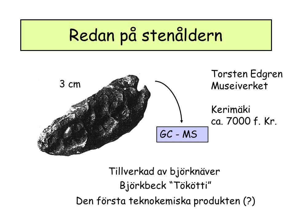 Redan på stenåldern Torsten Edgren Museiverket Kerimäki ca.