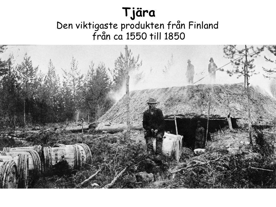 Tjära Den viktigaste produkten från Finland från ca 1550 till 1850