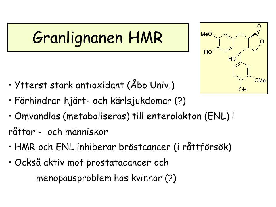 Granlignanen HMR Ytterst stark antioxidant (Åbo Univ.) Förhindrar hjärt- och kärlsjukdomar (?) Omvandlas (metaboliseras) till enterolakton (ENL) i råttor - och människor HMR och ENL inhiberar bröstcancer (i råttförsök) Också aktiv mot prostatacancer och menopausproblem hos kvinnor (?)