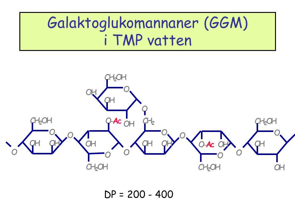 Galaktoglukomannaner (GGM) i TMP vatten DP = 200 - 400