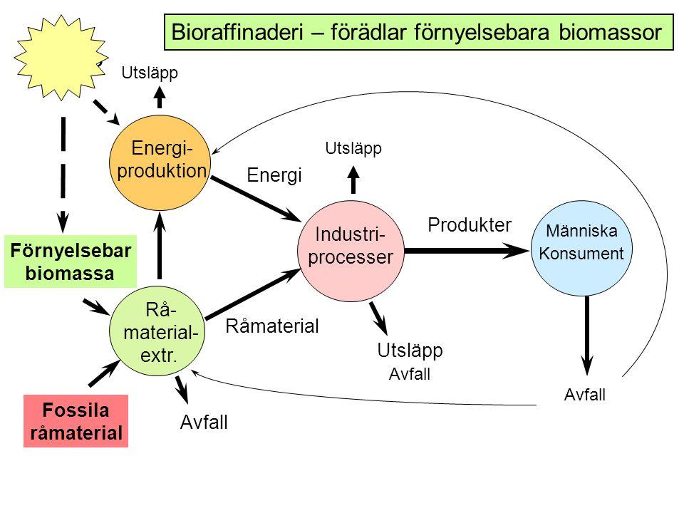 Industri- processer Energi Råmaterial Produkter Människa Konsument Energi- produktion Rå- material- extr.
