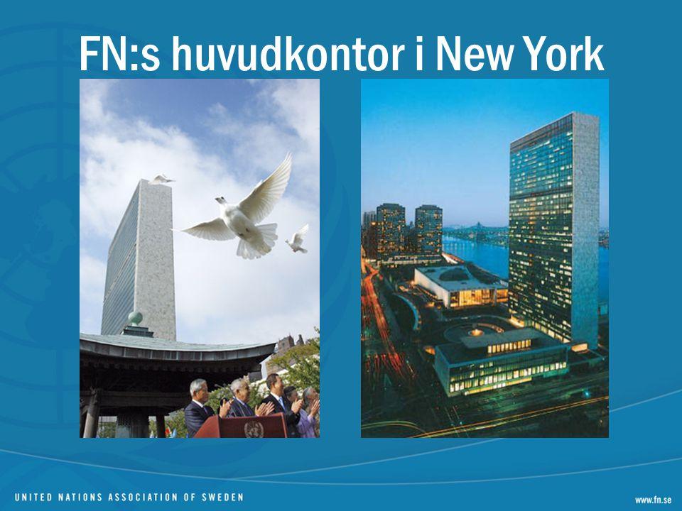 FN-stadgan Reglerar staters rättigheter och skyldigheter mot varandra – ett folkrättsligt instrument (traktat) Preciserar FN:s makt och befogenhet