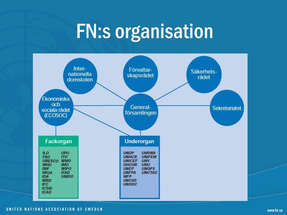 FN:s organisation
