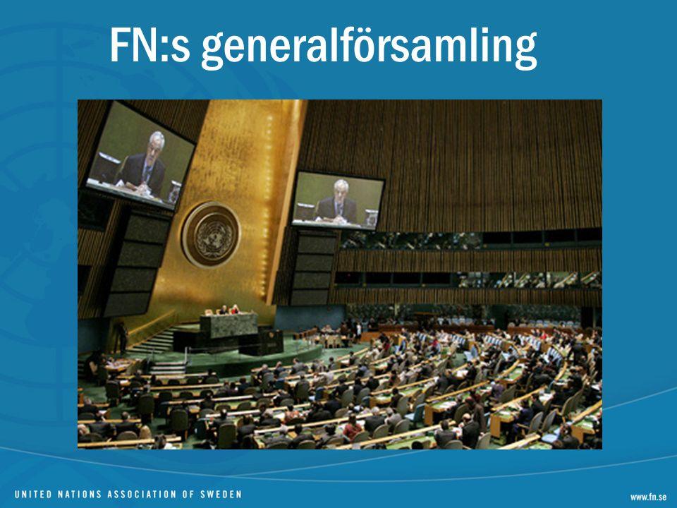 Öppnar i mitten av september Ett land – en röst Fattar beslut om FN:s arbete och budget Ca 170 frågor per år i sex utskott Beslut om möjligt med konsensus Resolutionerna ej juridiskt bindande 192 medlemmar