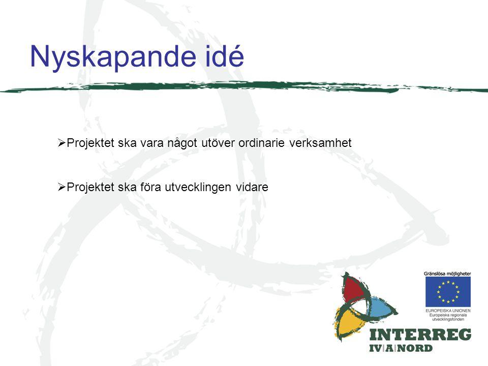 Nyskapande idé  Projektet ska vara något utöver ordinarie verksamhet  Projektet ska föra utvecklingen vidare