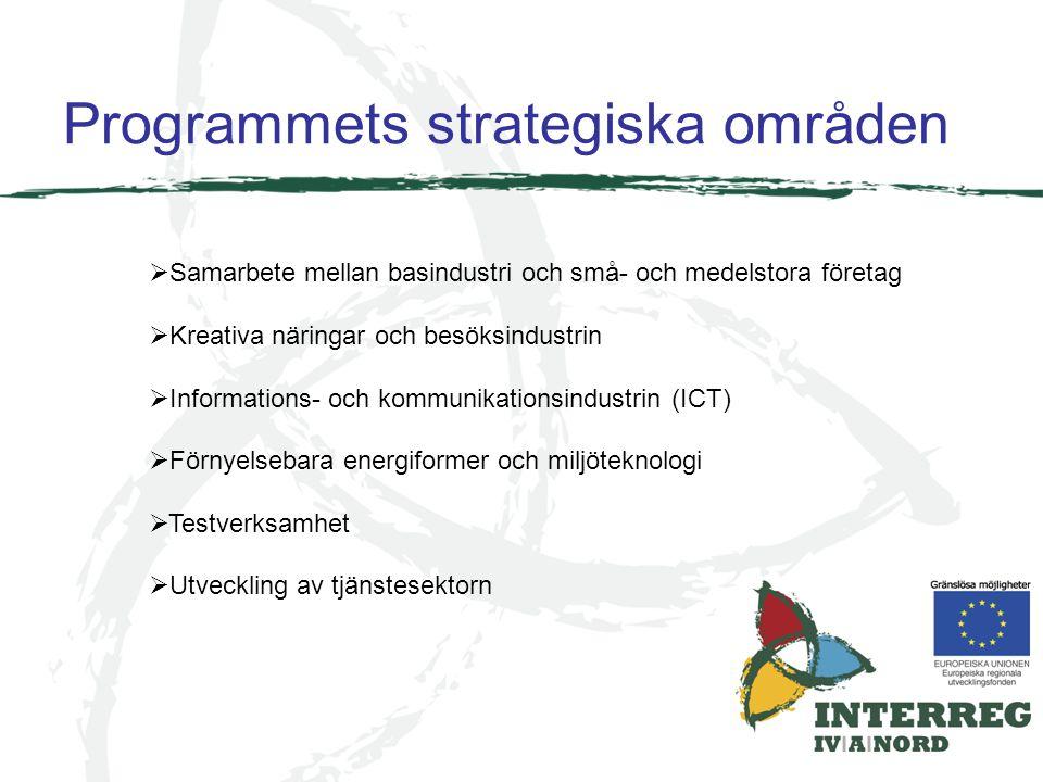 Programmets strategiska områden  Samarbete mellan basindustri och små- och medelstora företag  Kreativa näringar och besöksindustrin  Informations-