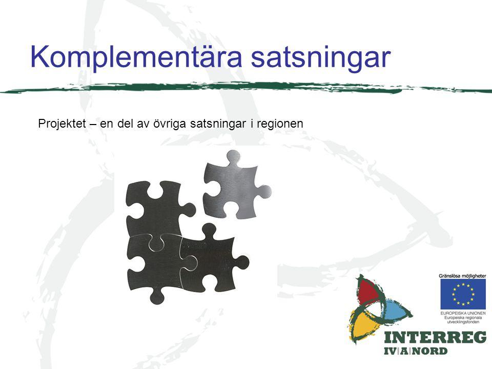 Komplementära satsningar Projektet – en del av övriga satsningar i regionen