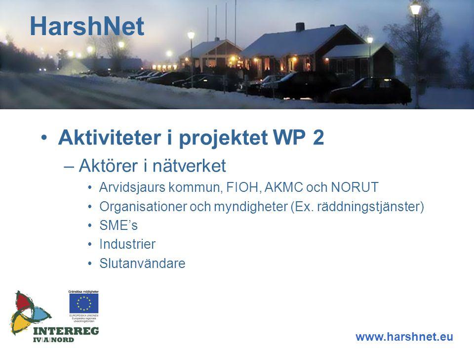 Aktiviteter i projektet WP 2 –Aktörer i nätverket Arvidsjaurs kommun, FIOH, AKMC och NORUT Organisationer och myndigheter (Ex.