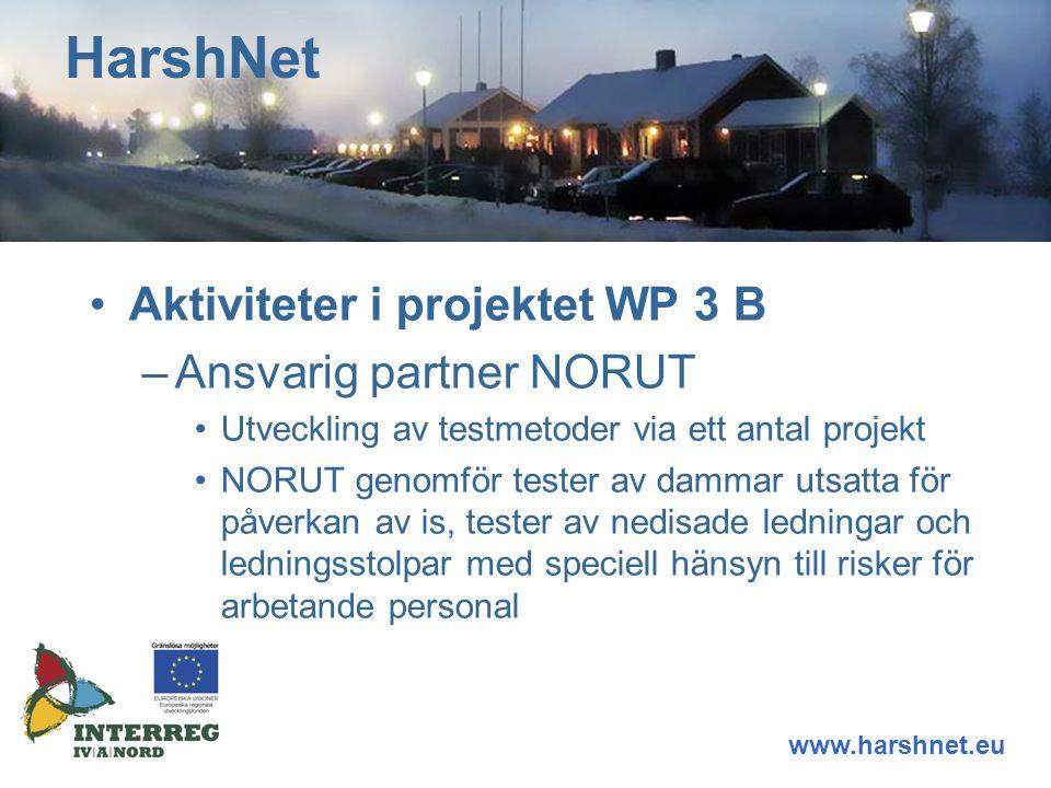 Aktiviteter i projektet WP 3 B –Ansvarig partner NORUT Utveckling av testmetoder via ett antal projekt NORUT genomför tester av dammar utsatta för påverkan av is, tester av nedisade ledningar och ledningsstolpar med speciell hänsyn till risker för arbetande personal HarshNet www.harshnet.eu