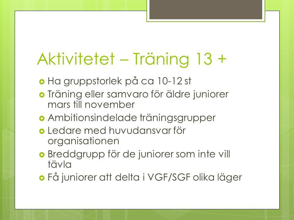 Aktivitetet – Träning 13 +  Ha gruppstorlek på ca 10-12 st  Träning eller samvaro för äldre juniorer mars till november  Ambitionsindelade träningsgrupper  Ledare med huvudansvar för organisationen  Breddgrupp för de juniorer som inte vill tävla  Få juniorer att delta i VGF/SGF olika läger