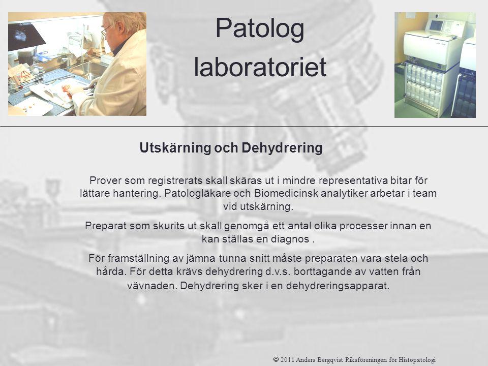 Patolog laboratoriet Utskärning och Dehydrering Prover som registrerats skall skäras ut i mindre representativa bitar för lättare hantering. Patologlä