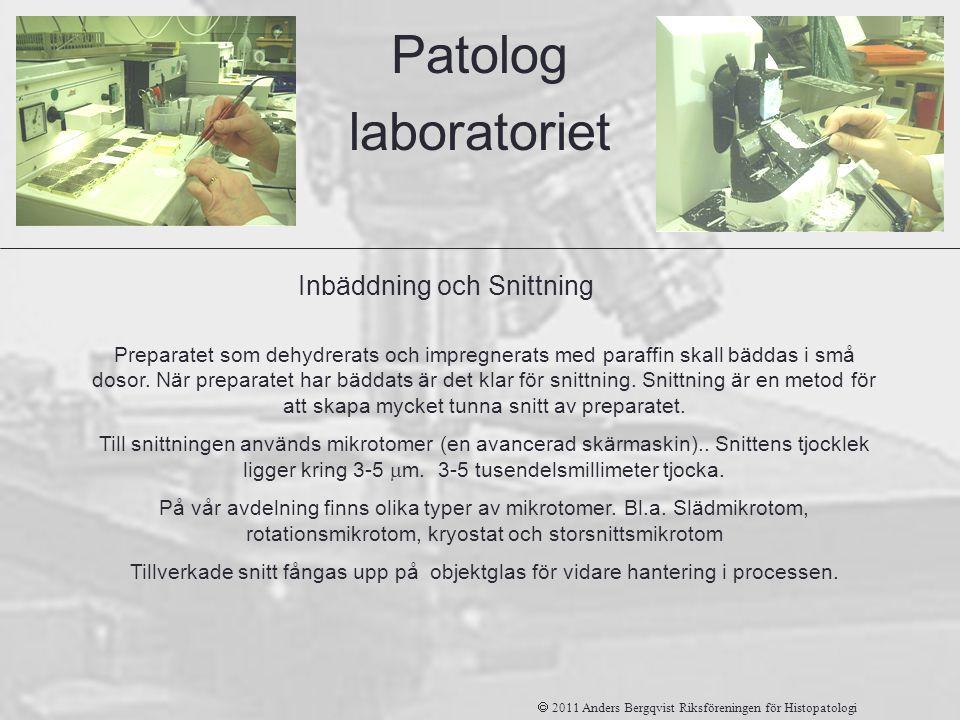 Inbäddning och Snittning Patolog laboratoriet Preparatet som dehydrerats och impregnerats med paraffin skall bäddas i små dosor. När preparatet har bä
