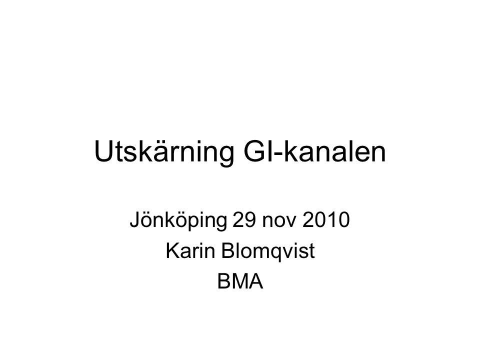 Utskärning GI-kanalen Jönköping 29 nov 2010 Karin Blomqvist BMA