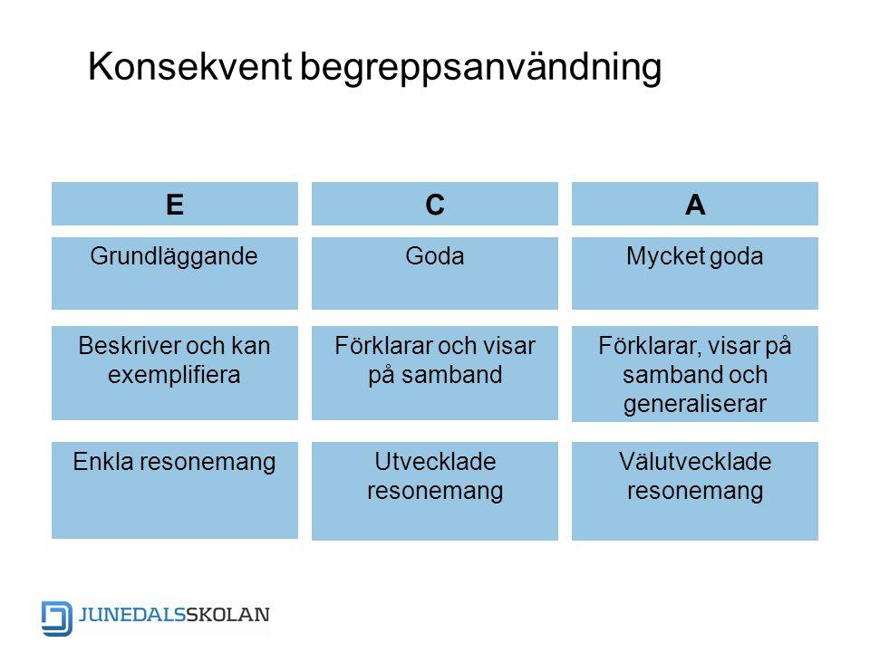 Konsekvent begreppsanvändning ECA GrundläggandeGodaMycket goda Beskriver och kan exemplifiera Förklarar och visar på samband Förklarar, visar på samba