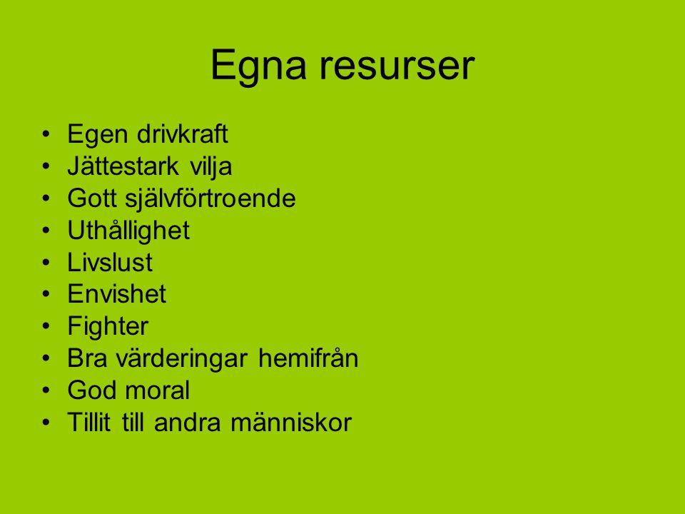 Egna resurser Egen drivkraft Jättestark vilja Gott självförtroende Uthållighet Livslust Envishet Fighter Bra värderingar hemifrån God moral Tillit til