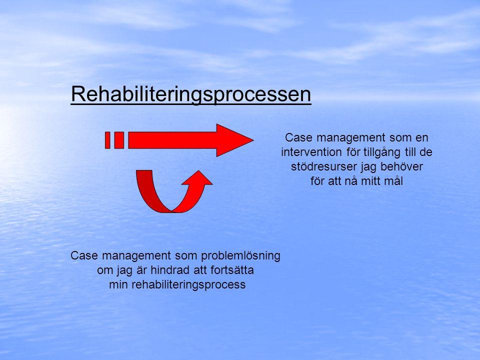Rehabiliteringsprocessen Case management som en intervention för tillgång till de stödresurser jag behöver för att nå mitt mål Case management som pro