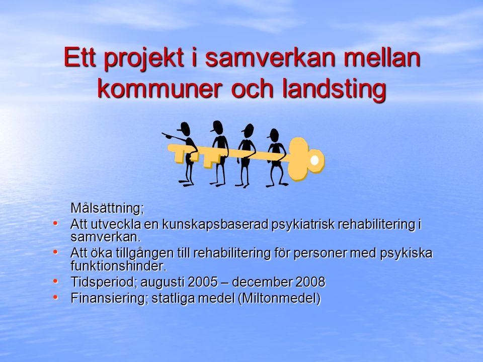 Aktiviteter i projektet Handledning till grupper och individer i rehabiliteringsmetodik Konsultation på system och verksamhetsnivå Utbildning föreläsningar, kännedomsutbildning, kompetensutbildning