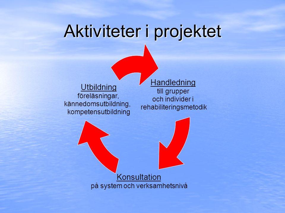 Aktiviteter i projektet Handledning till grupper och individer i rehabiliteringsmetodik Konsultation på system och verksamhetsnivå Utbildning föreläsn