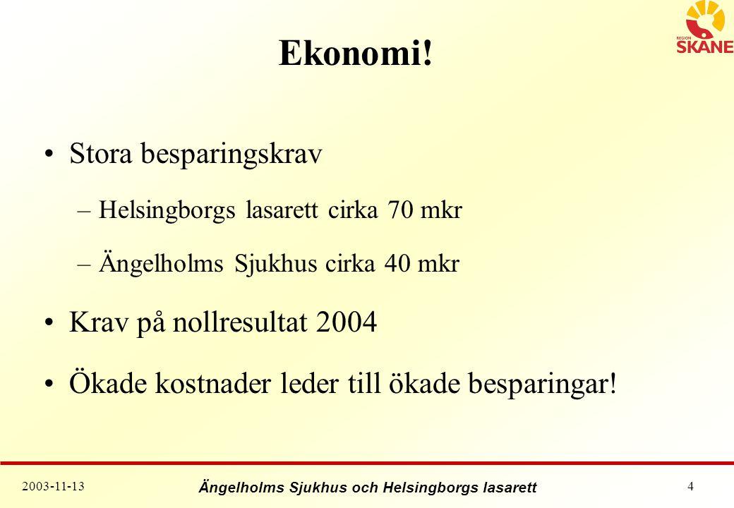 Ängelholms Sjukhus och Helsingborgs lasarett 2003-11-134 Ekonomi.