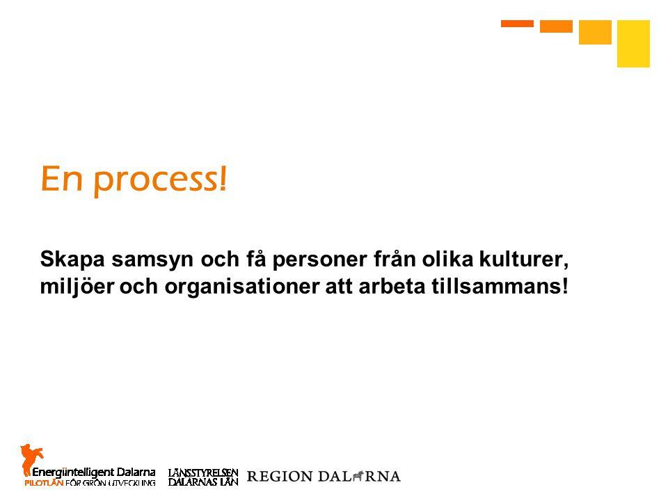 En process! Skapa samsyn och få personer från olika kulturer, miljöer och organisationer att arbeta tillsammans!